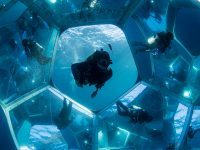 Underwater, Doug Aitken Returns to the Real